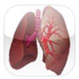 L'auscultation pulmonaire